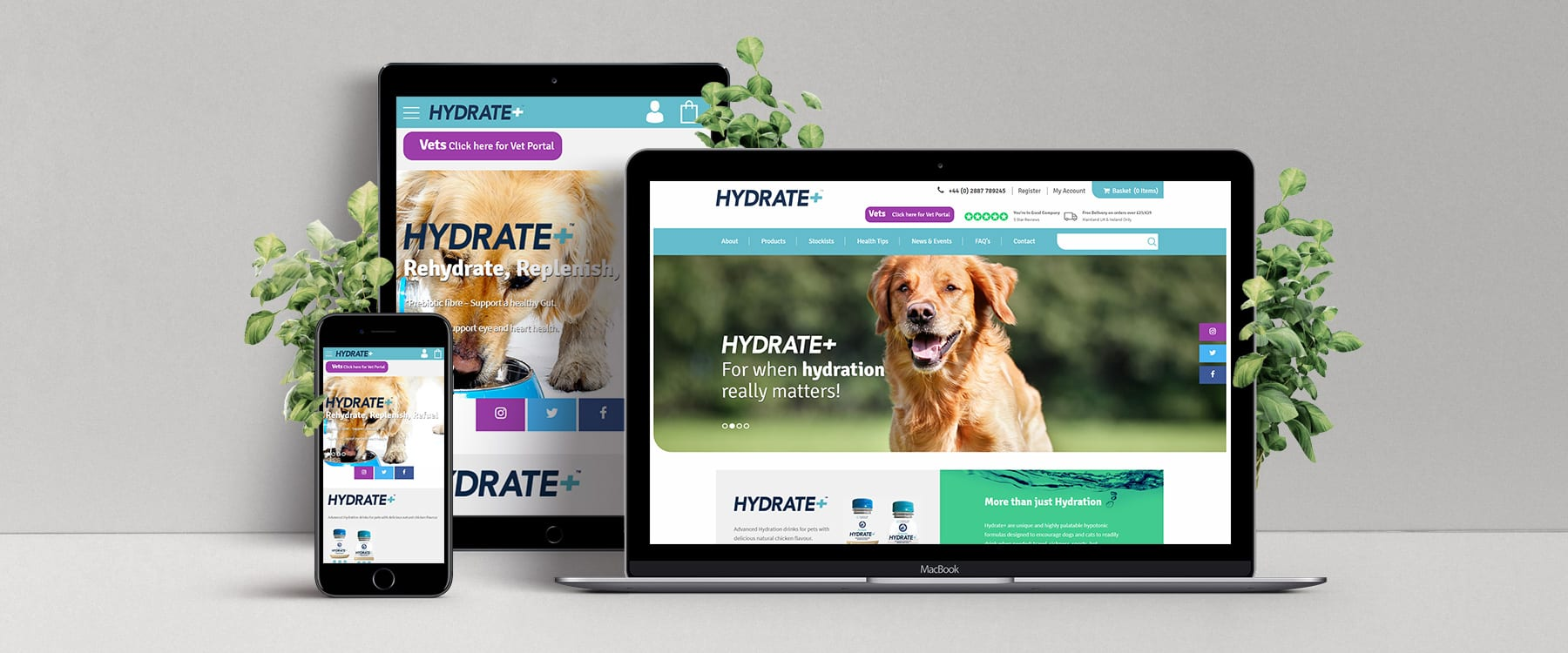 Oralade Pet Launch New eCommerce Website Image