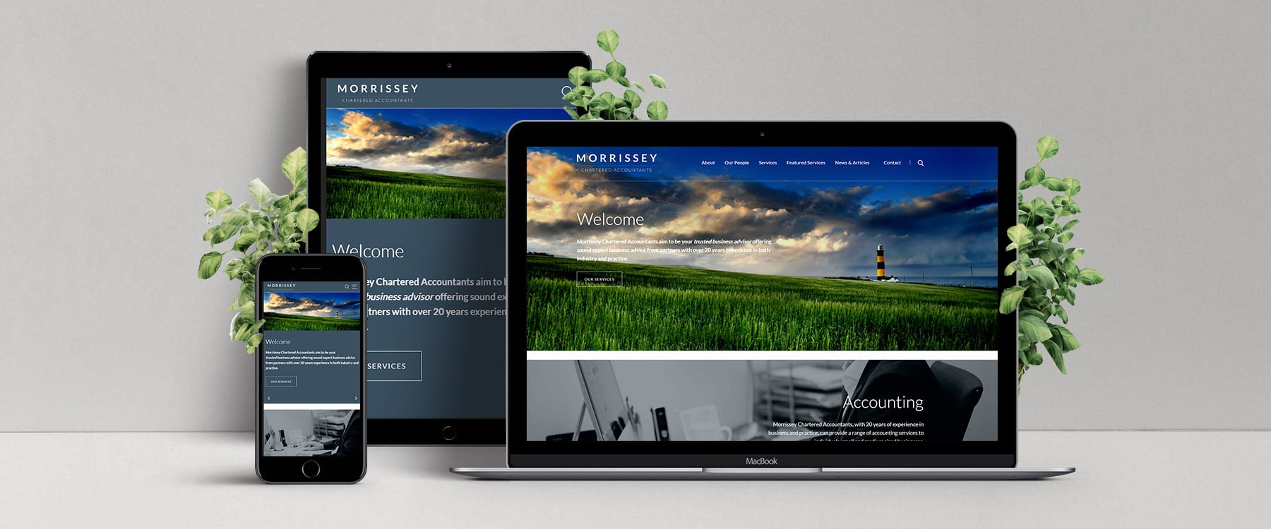 Professional New Bespoke Website for Morrissey Chartered Accountants Image