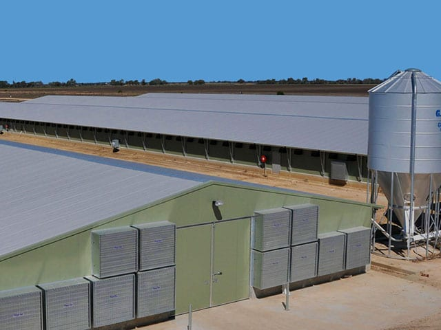 International Specialists in Poultry Solutions, Orient, Launch Visually Engaging Brochure Website Featured Image
