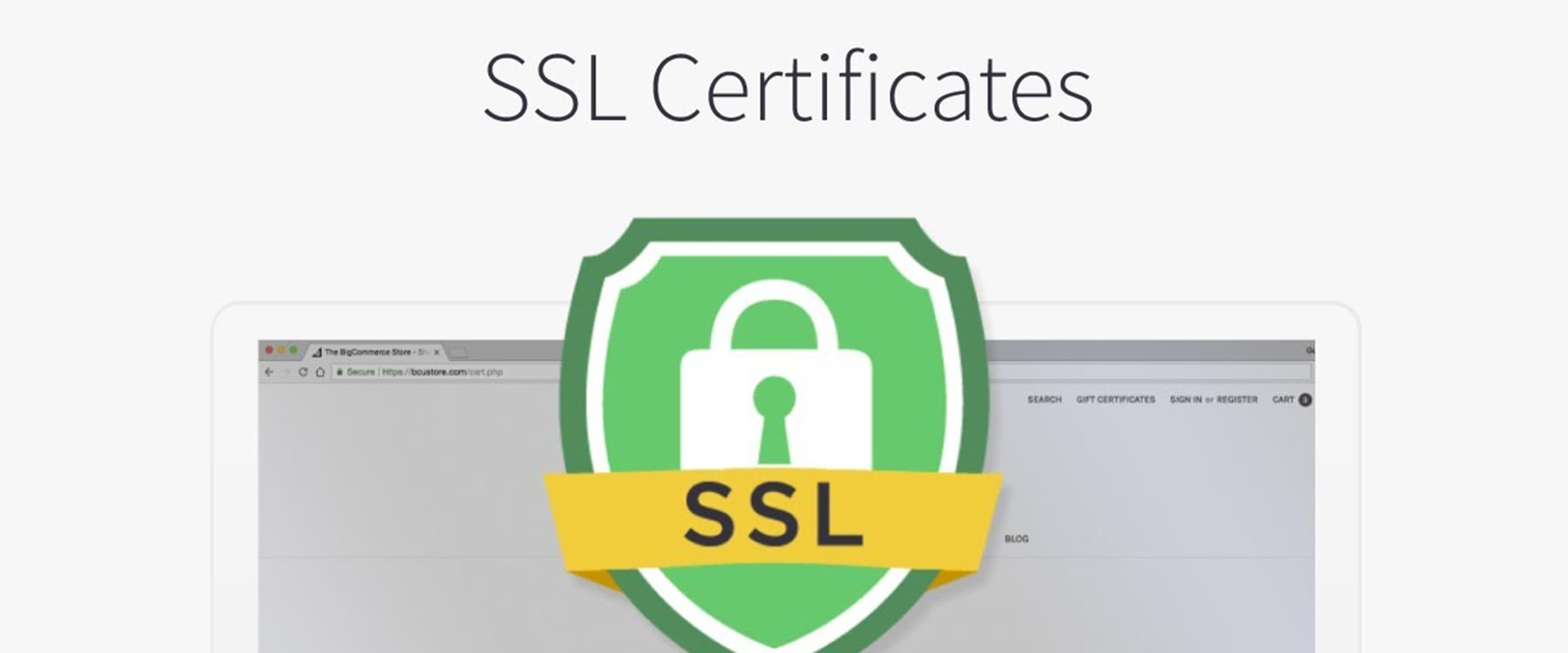 Keeping Your Website & Your Visitors Secure & Protected With an SSL Certificate Image