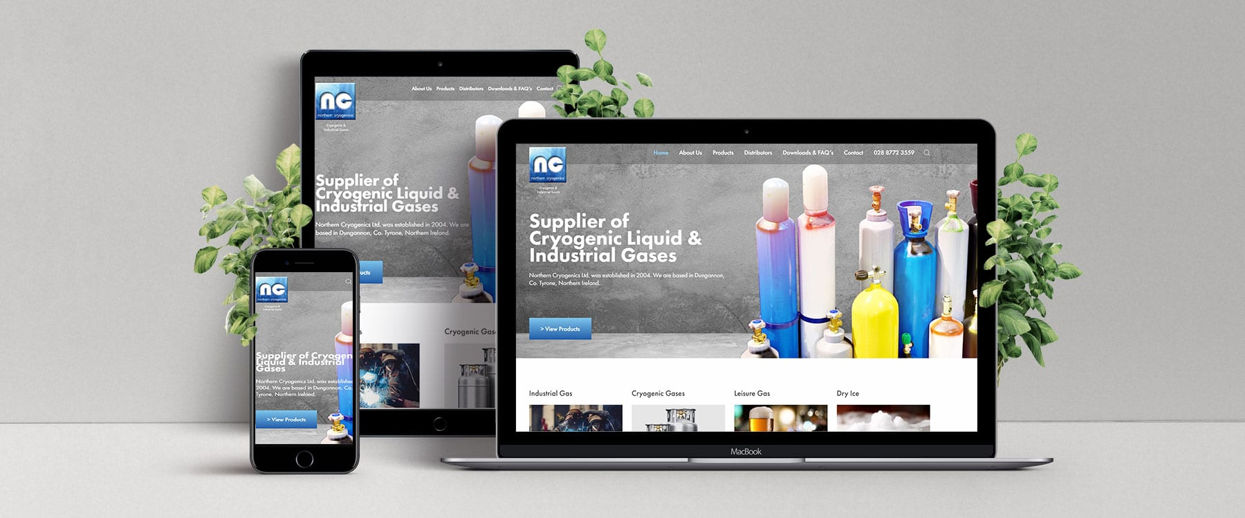 New and Improved Website for Northern Cryogenics Image