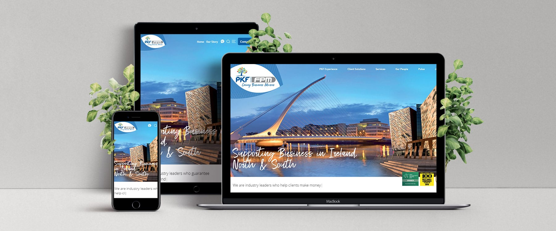 Exciting New Website for PKF-FPM Image