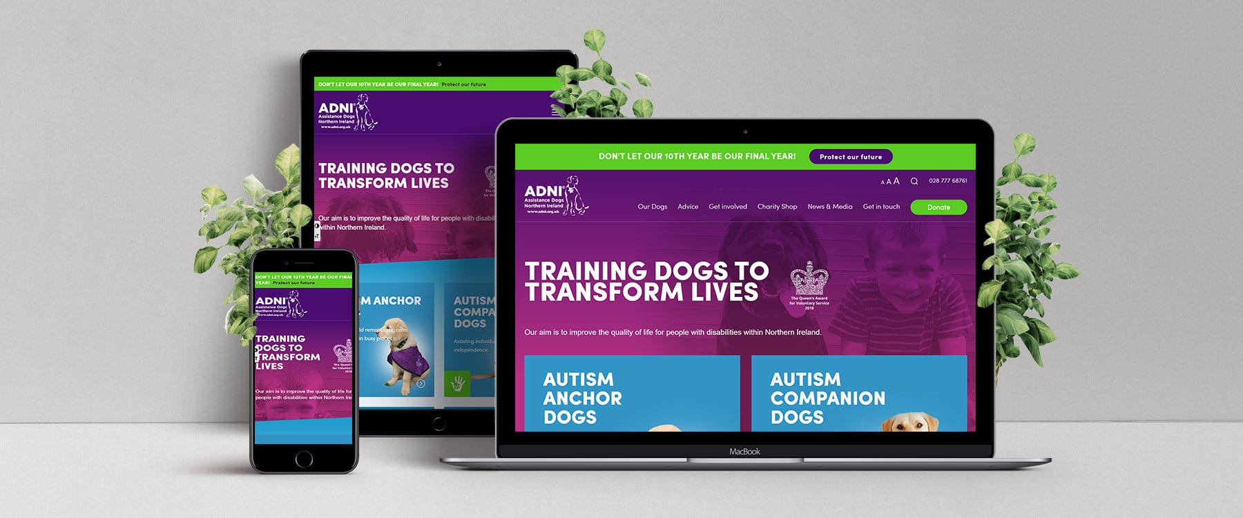 Engaging, Modern New Website for Assistance Dogs Northern Ireland Image